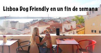 WOMANWORD in Lisboa