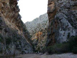 WOMANWORD en el Tren de Soller. Mallorca. Serra de Tramuntana.