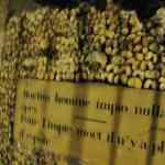El Subsuelo de París: Catacumbas