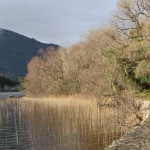Irlanda: Killarney and Ross Castle