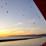 Vistas al Mar desde un Crucero de lujo