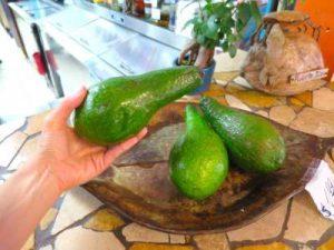 WOMANWORD. Gastronomía en Puerto Rico