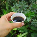 Puerto Rico: Un café, por favor