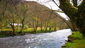 Beddgeler WOMANWORD in Wales