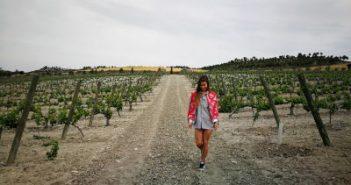 WOMANWORD en la Ruta del Vino de Cigales, Valladolid