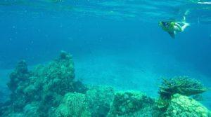 Cozumel. Riviera Maya. Quintana Roo. México by WOMANWORD