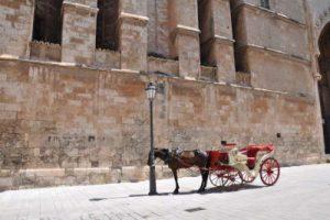 WOMANWORD en Mallorca
