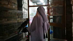 Descubre Qatar en una escala: BIENVENIDOS A DOHA. WOMANWORD in Qatar.