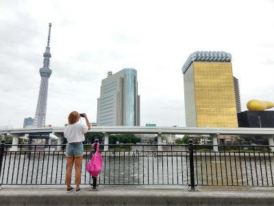 Tokyo en tres días: Qué ver, Qué hacer, dónde ir